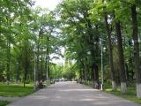 Парки без деревьев